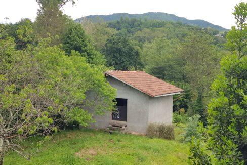 37 - Pertinenza dell'abitazione principale